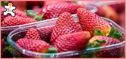 Introduction of Strawberry productivity technology