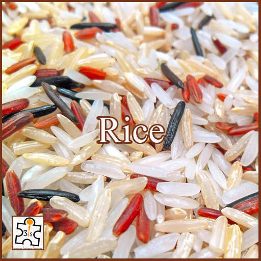 Rice EB