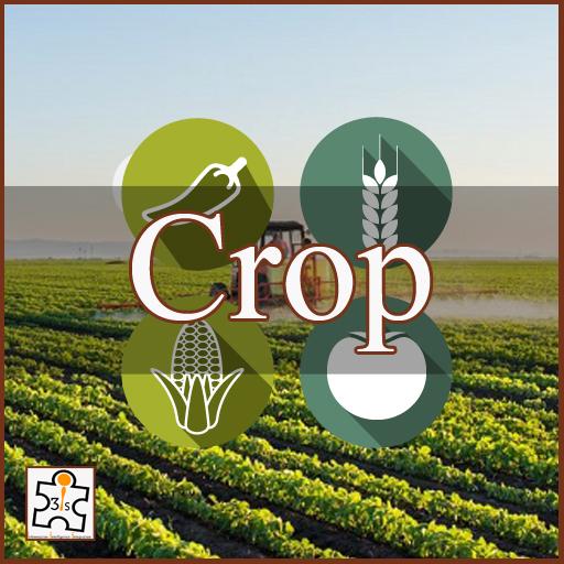 Major Crop EB