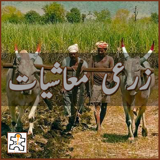 زرعی معاشیات