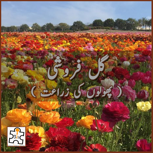 ( گل فروشی ( پھولوں کی زراعت