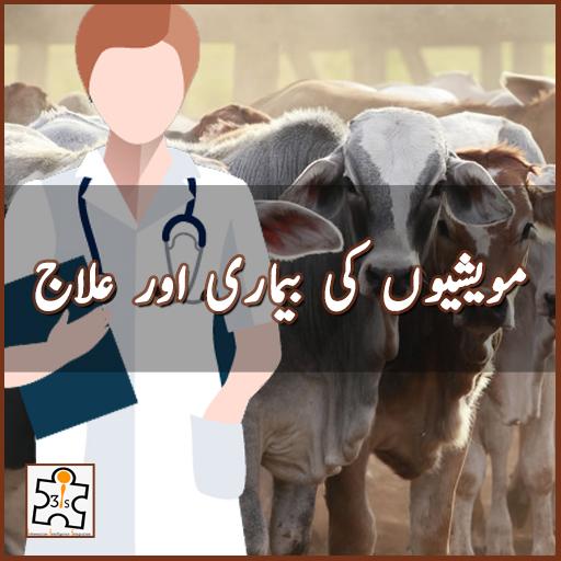 مویشیوں کی بیماری اور علاج